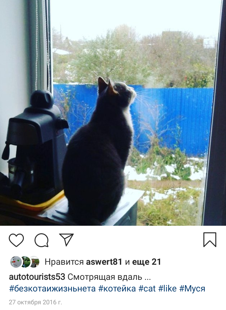 Наша Муся ловит взглядом снежинки