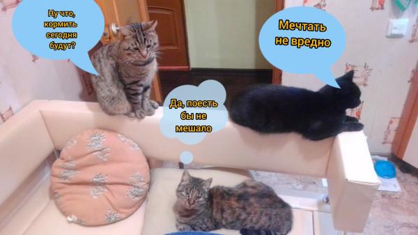 Суровые будни мамы двойняшек!