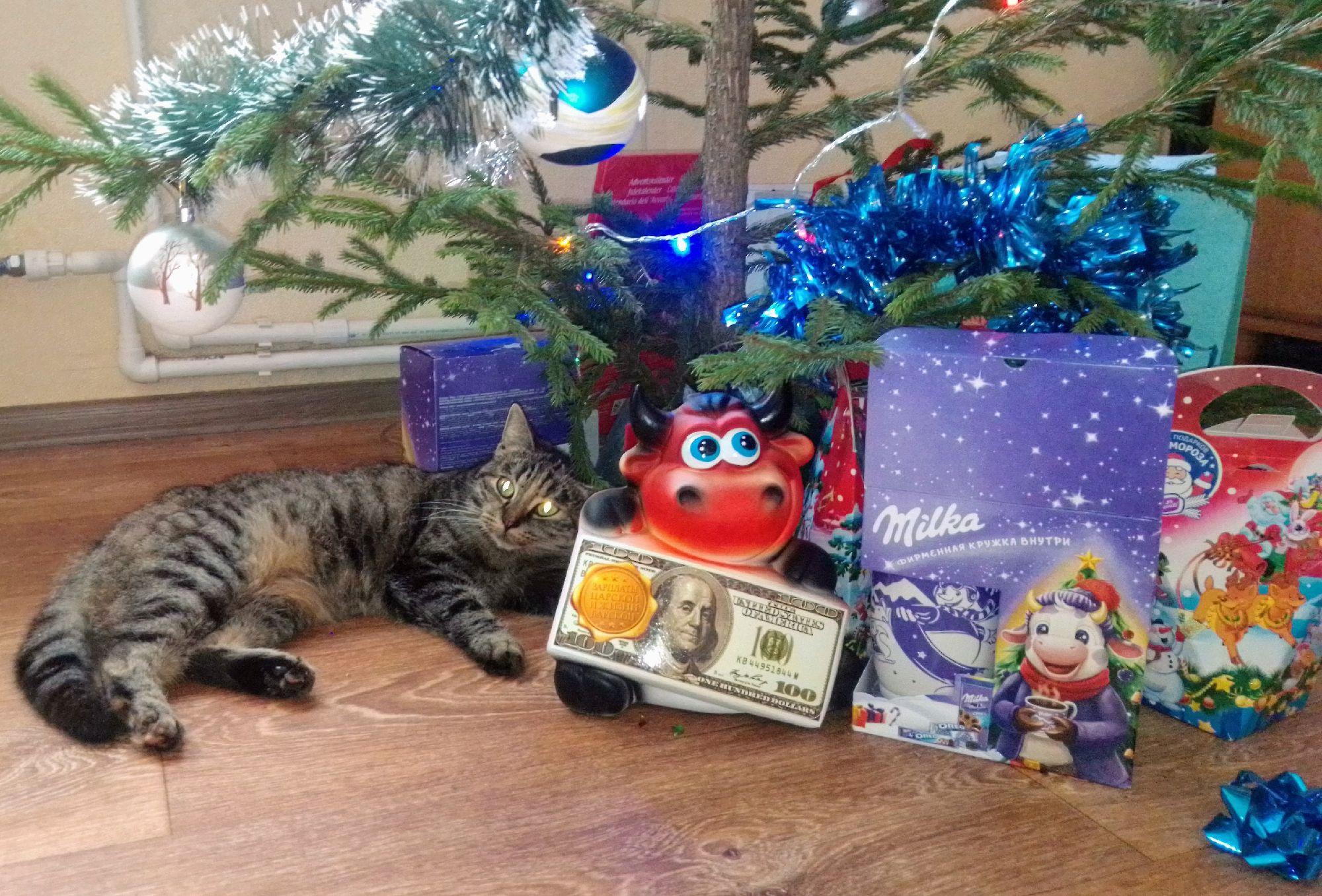 У детей есть личный сторож подарков!