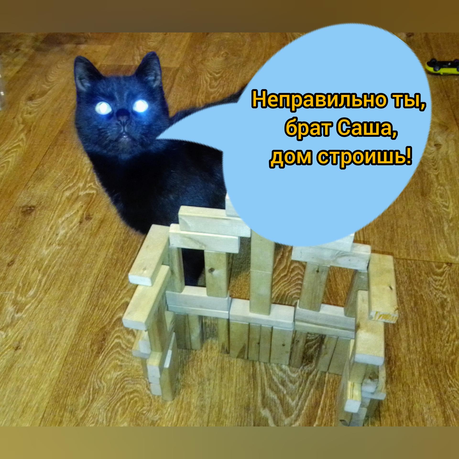 Заключение ЭКСПЕРТА!