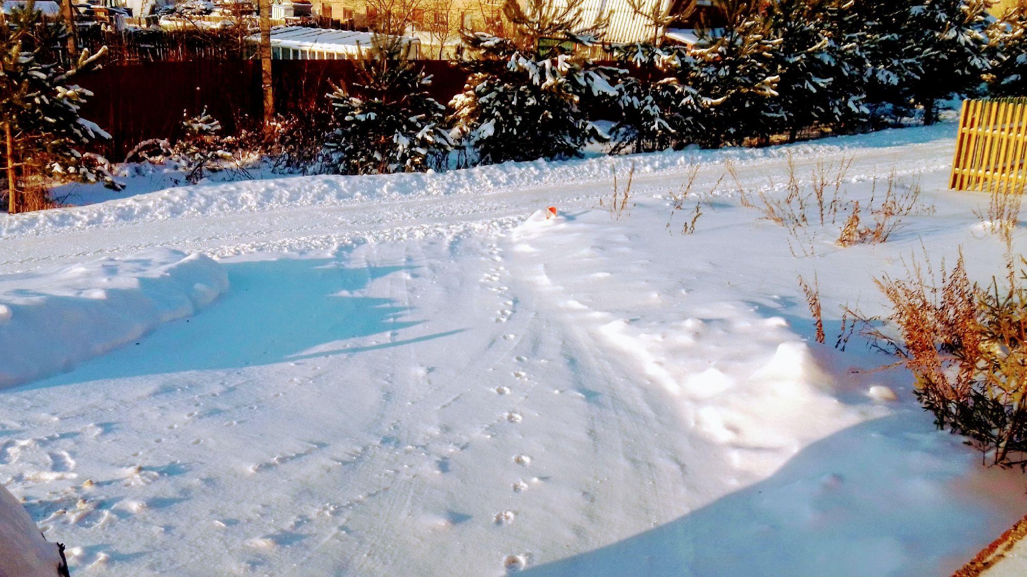 Красота около дома и следы собакена на снегу