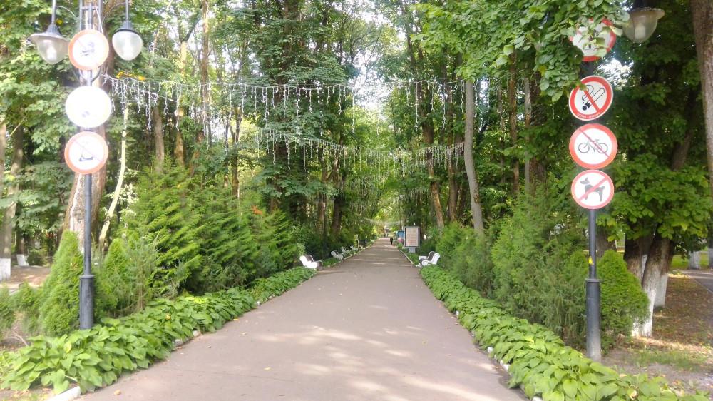 Центральная аллея парка на территории курорта