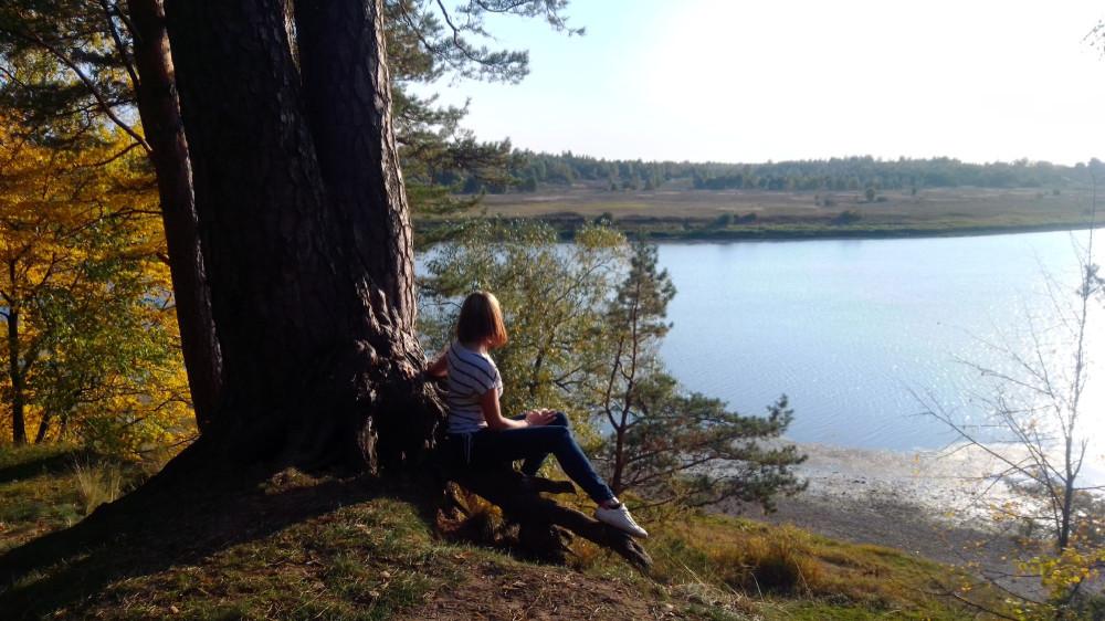 Вид на реку Шелонь