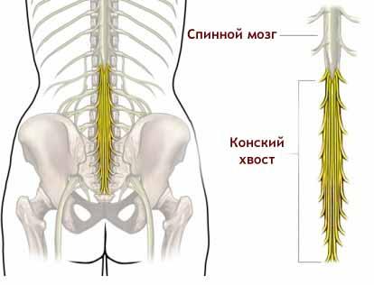 2012-01-06_23081
