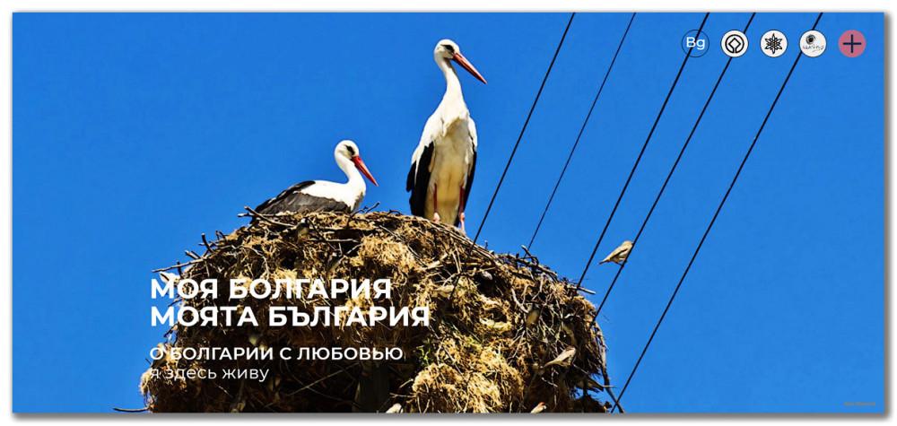 МОЯ-БОЛГАРИЯ.jpg