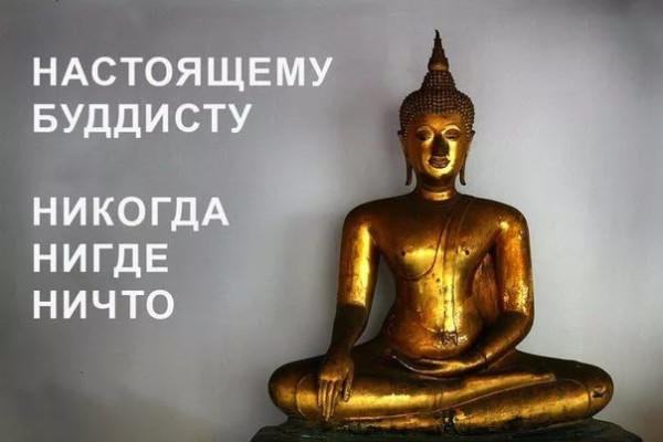 Буддизм прикольные картинки