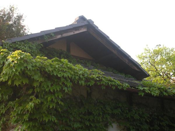 ivyhouse2