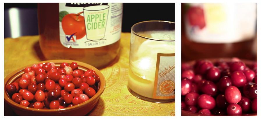 01_cranberries