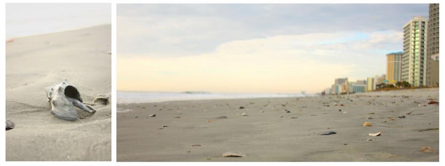 05_sand_shell