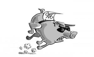 fast pig