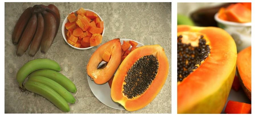 00_papaya