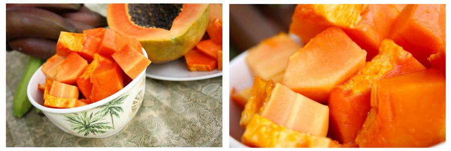 01_papaya