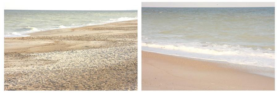03_beach_milk