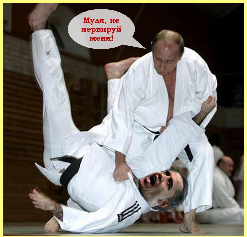 Копия (3) Копия 1261458425_003_23907_putin_judo03