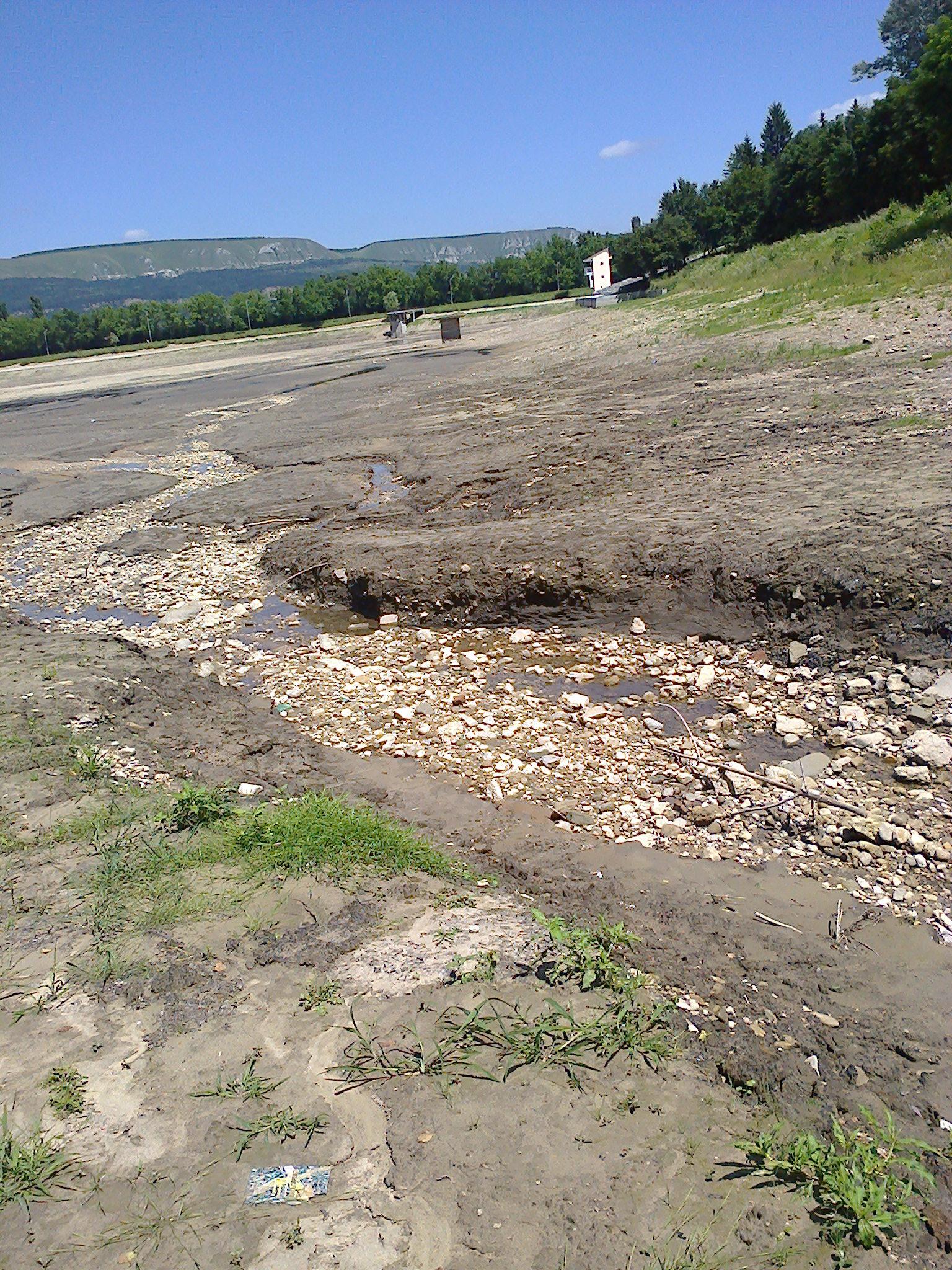 старое озеро июль 2014-6