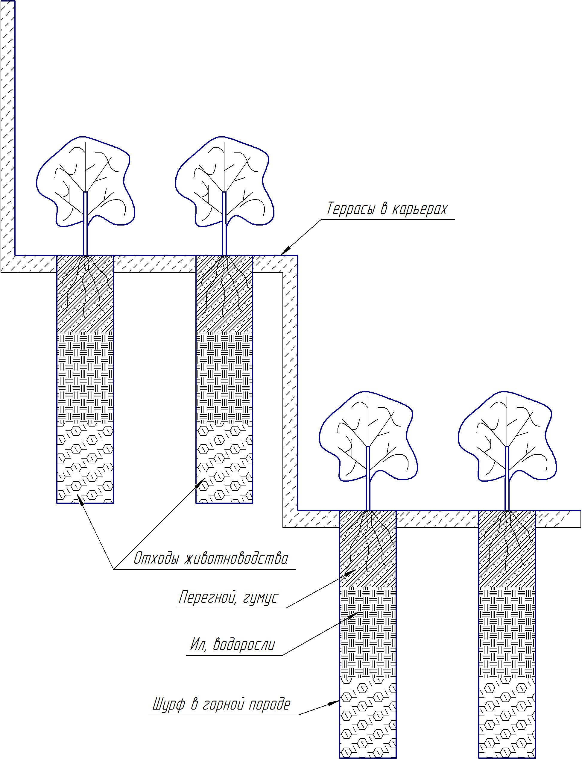Схема высадки насаждений на спиралеобразных террасах карьеров