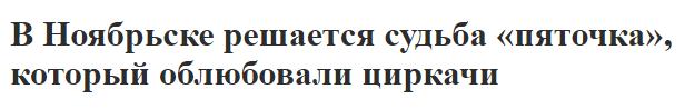 screenshot-noyabrsk-inform.ru-2018-03-13-17-12-57-822