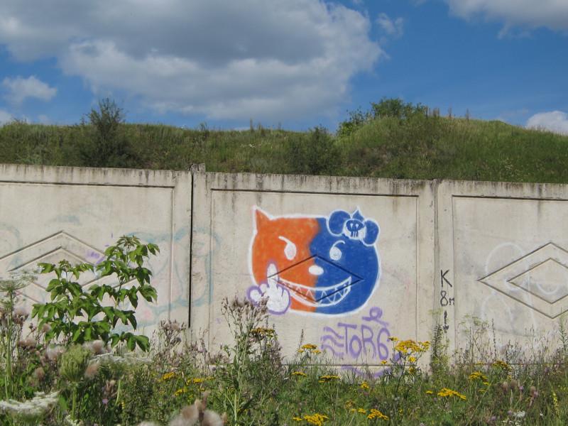 Дуальный котик на водозаборе в Половце