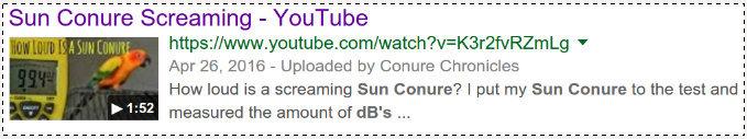 Sun_Conure_dB