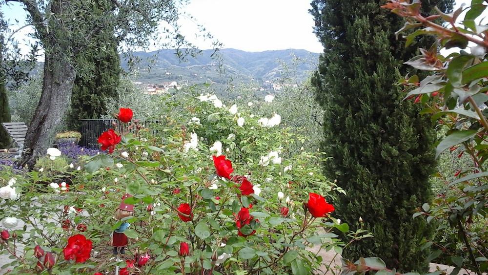 http://ic.pics.livejournal.com/avmalgin/6046593/2851419/2851419_original.jpg