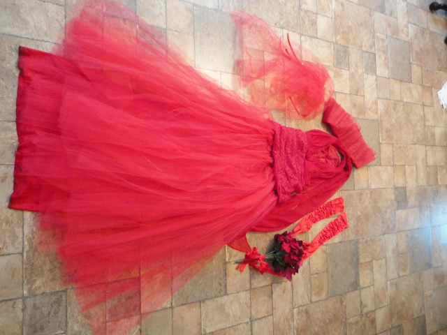Selling my Lydia Deetz Wedding Costume - buffalo