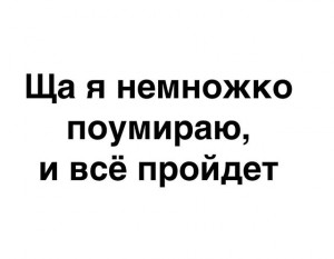 прпвада.png
