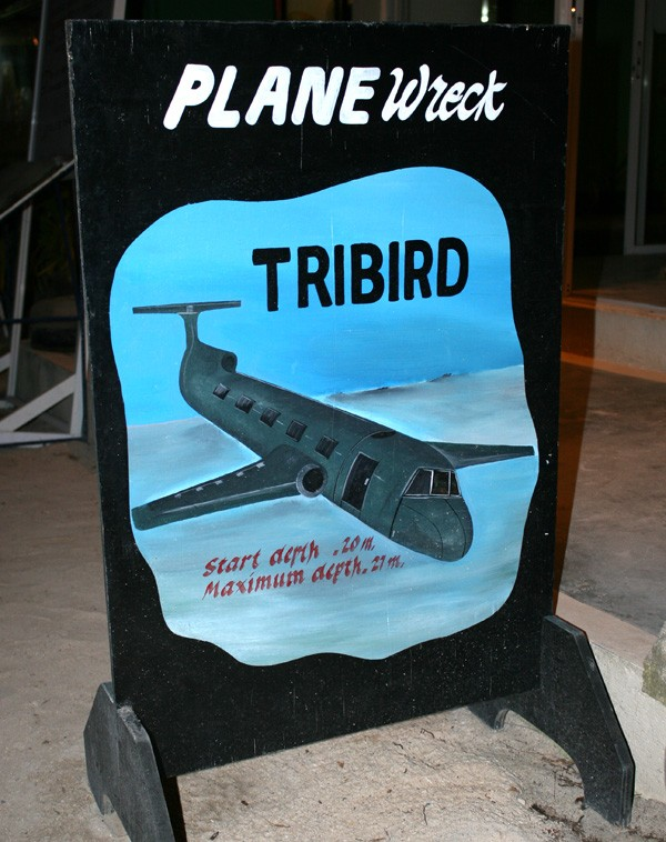 Tribird