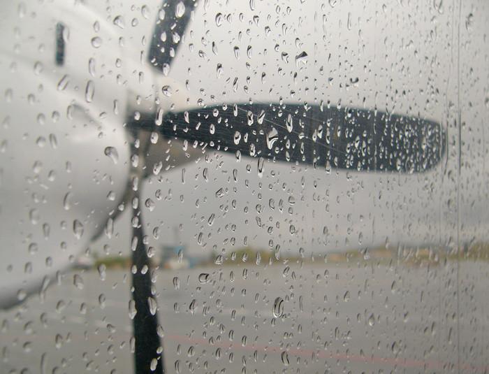 6 rain