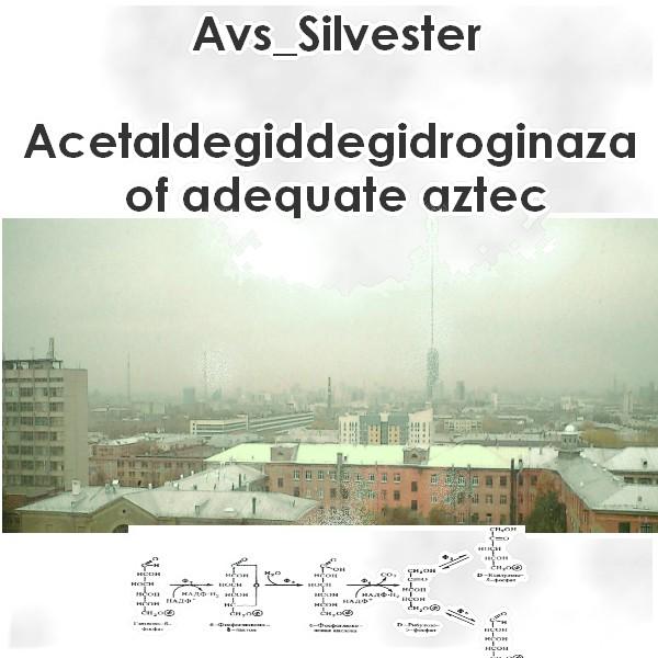 Avs_Silvester - ADDGoAA