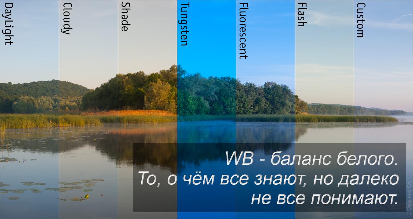 01 WB_Tizer