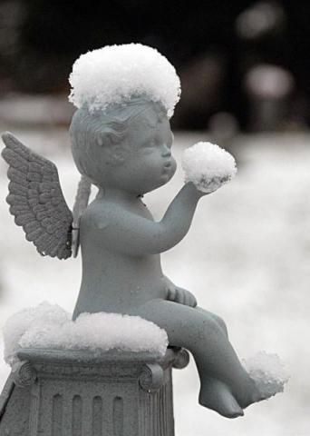ангел в снегу