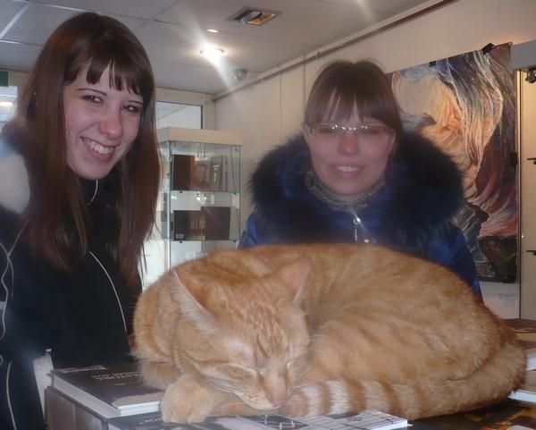 кот в музее Ахматовой
