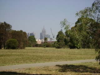 Looking to the CBD from Royal Park