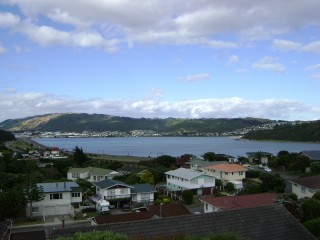 Porirua Harbour in the morning