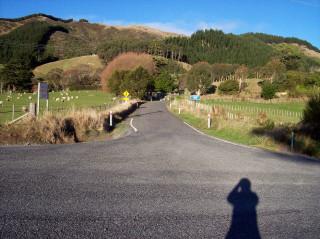 Maungakotukutuku Road