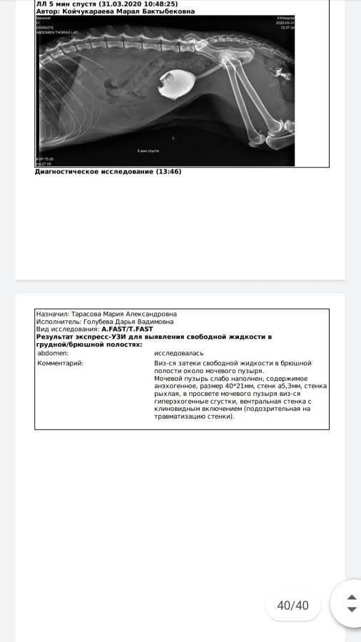 Screenshot_20200331_212138_com.google.android.apps.docs.jpg