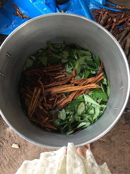 Напиток аяхуаска в процессе варки