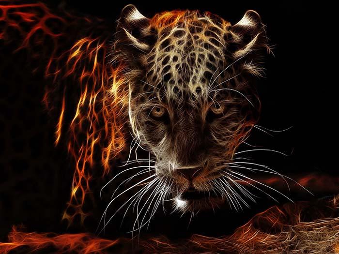 мерцающий ягуар