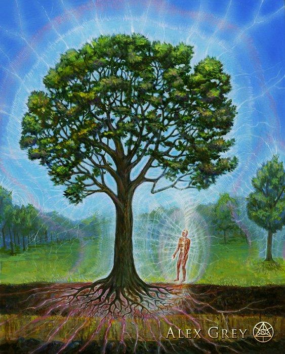 Художник Алекс Грей в своих картинах попытался описать видение мира, с которым его познакомила аяхуаска. Взято с alexgrey.com