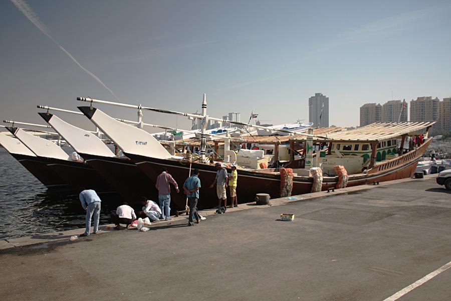 15_uae_fishmarket