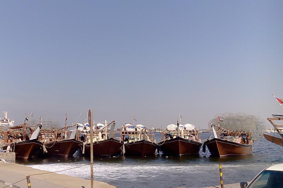 06_uae_fishmarket