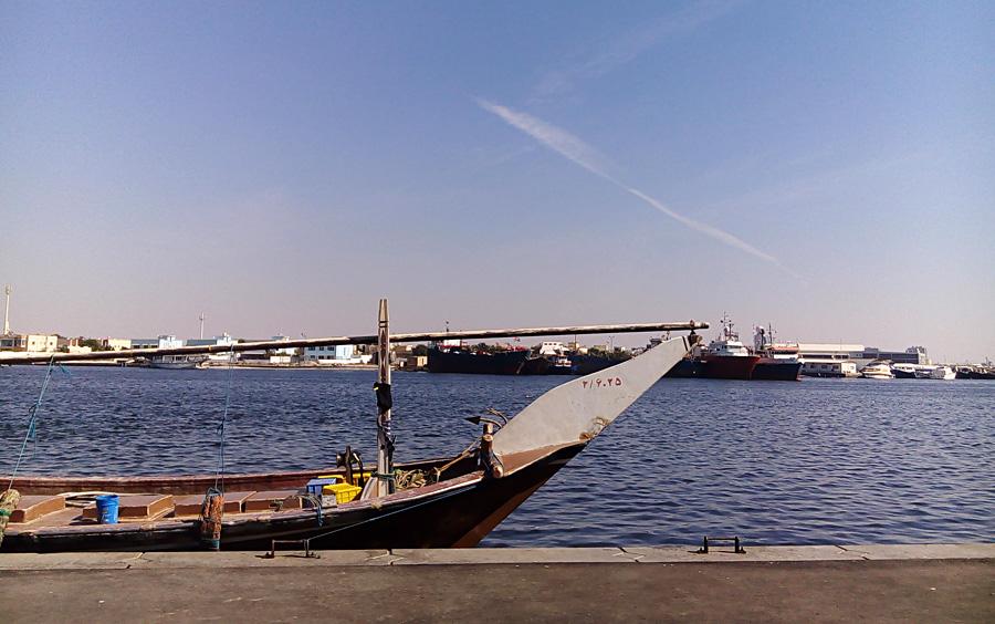 21_uae_fishmarket