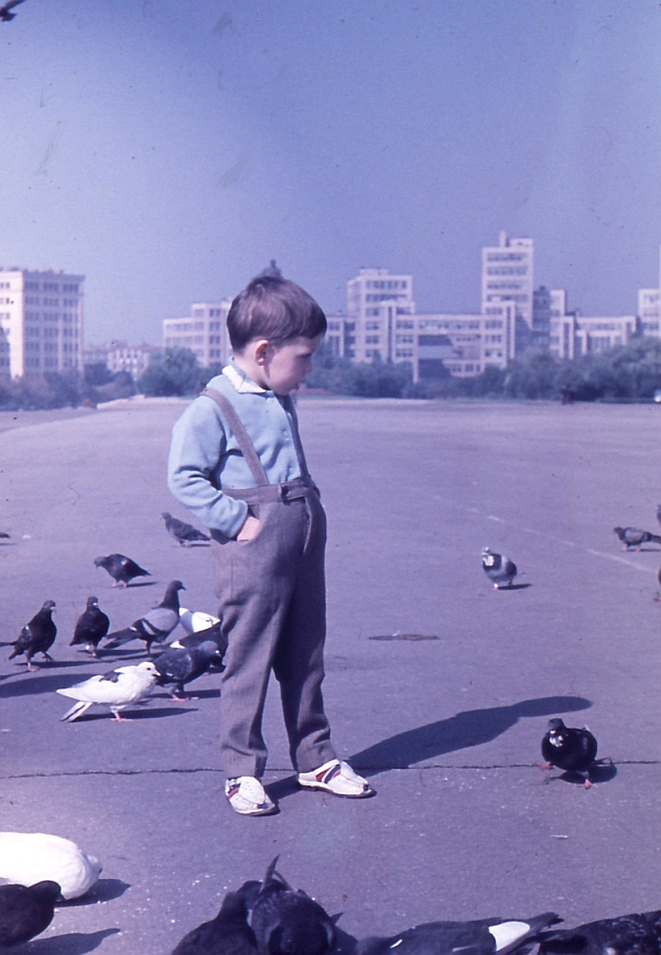 Алик и голуби 3