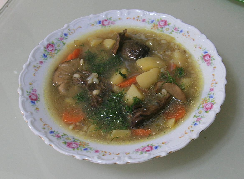 sup s gribami