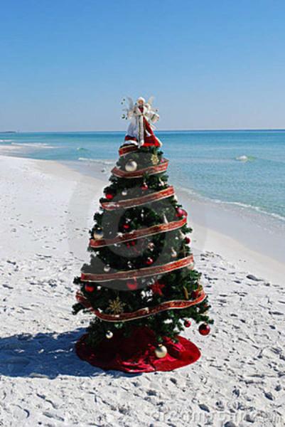 christmas-tree-beach-14723382