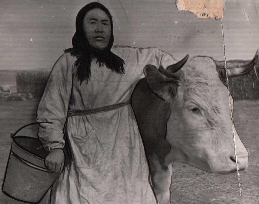 Зугалай. Доярка Долгоржаб Ринчинимаева. 1953 г..jpg
