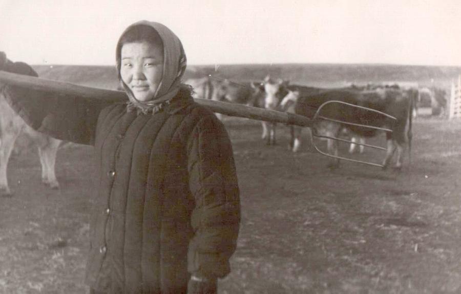 5. Ученица 10 кл. АСШ 1 Жамбалова Бальжима. Будалан. Трудится на ферме. 1962 г..jpg