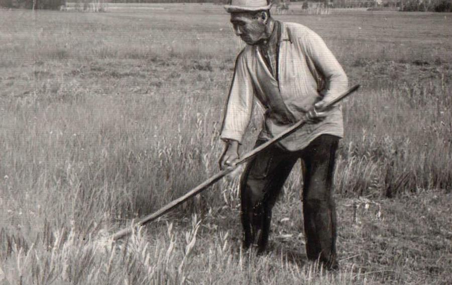 78-летний косарь Цыренов Цыбик, Зуткулей.jpg