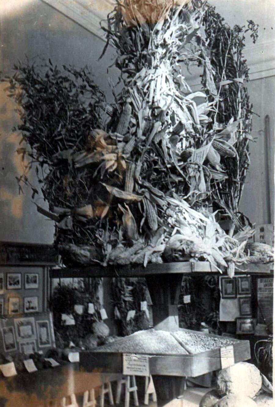 Агинская сх выставка 1963 г.jpg