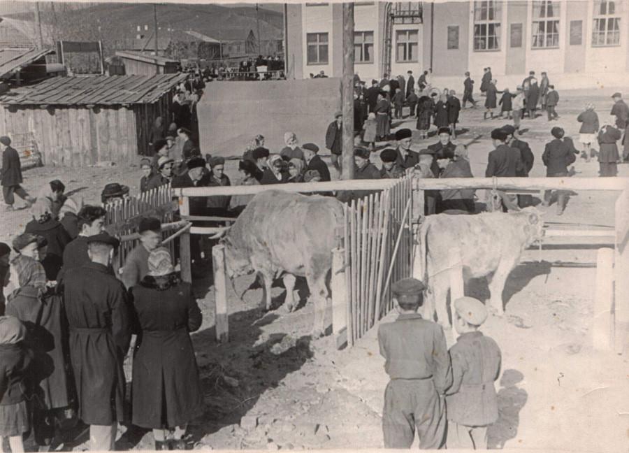 29. Агинская окружная сельскохозяйственная выставка. 1963 год.jpg